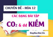 Các dạng toán CO2, SO2 tác dụng với dung dịch Kiềm NaOH, Ba(OH)2 Phương pháp giải và Bài tập - Hóa 12